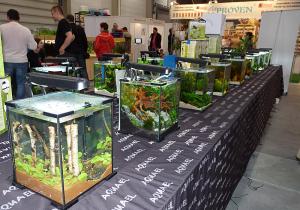 Jako integralny punkt wystawy akwarystycznej były zorganizowane konkursy na najładniejsze akwarium. W konkursie nano - akwarium wystawionych było 16 zbiorników w kostkach firmy AQUAEL Shrimp Shet 20.