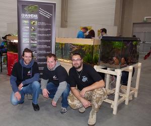 Miłośnicy wężogłowów postawili na wystawie trzy zbiorniki z rybami rodzaju