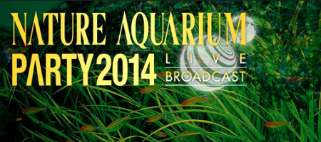 Nature Aquarium Party 2014