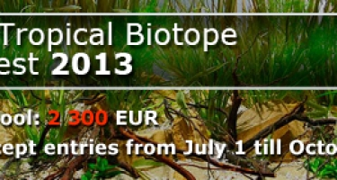 JBL Tropical Biotope Contest 2013
