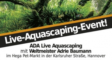 ADA Germany - LIVE Aquascaping Event