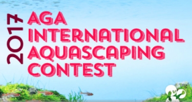 AGA Aquascaping Contest 2017