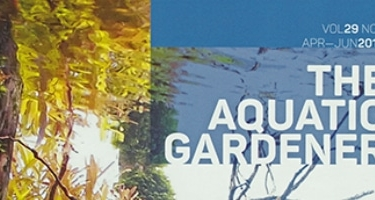 Nowy numer kwartalnika The Aquatic Gardener (29-2)