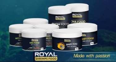Royal Shrimps Food - pokarmy dla krewetek + konkurs