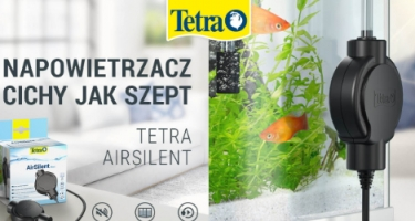 Tetra Air Silent HIT czy KIT ?