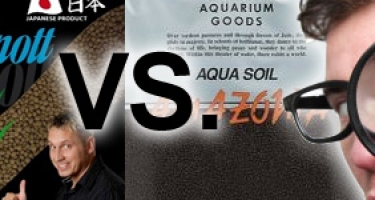Oliver Knott Nature Soil VS ADA Amazonia
