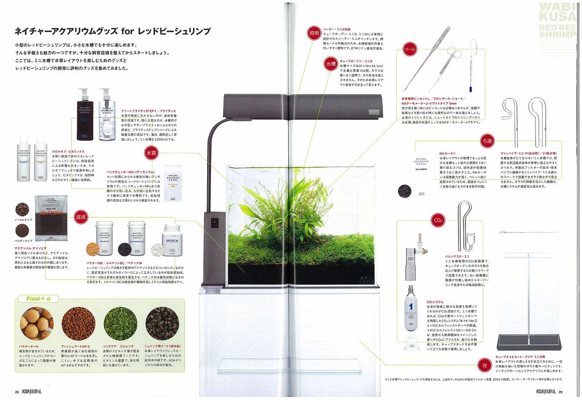 10 Przykazań Akwarium Roślinnego