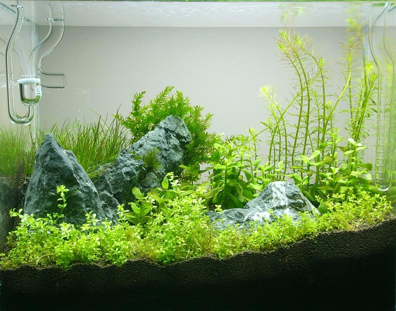 Pokaz zakładania NANO akwarium