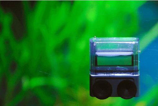 Dropchecker Co2 Dauertest Für Aquarium Billigverkauf 50% Haustierbedarf Fische & Aquarien