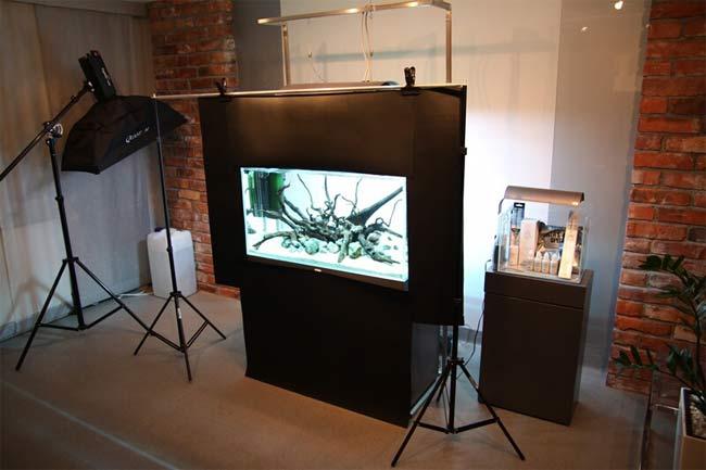 aquarium ohne pflanzen. Black Bedroom Furniture Sets. Home Design Ideas