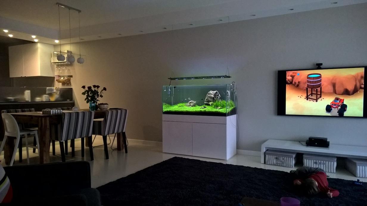 Aquarium-Anlage im Wohnzimmer